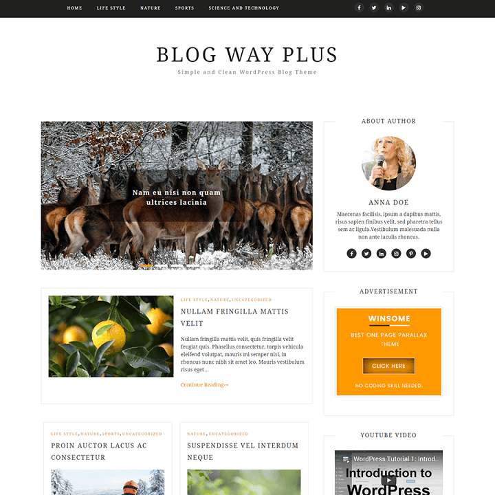 Blog Way Plus WordPress Teması
