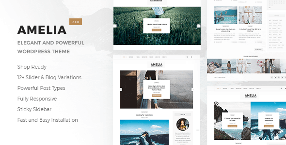 Amelia WordPress Theme